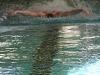 kaerntner-meisterschaften-allg-klasse-26-feber-2012-002-13